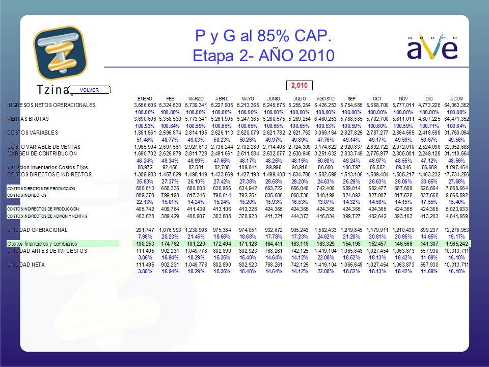 P y G al 85% CAP. Etapa 2- AÑO 2010