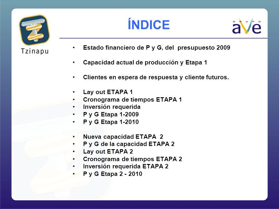 Estado financiero de P y G, del presupuesto 2009 Capacidad actual de producción y Etapa 1 Clientes en espera de respuesta y cliente futuros. Lay out E