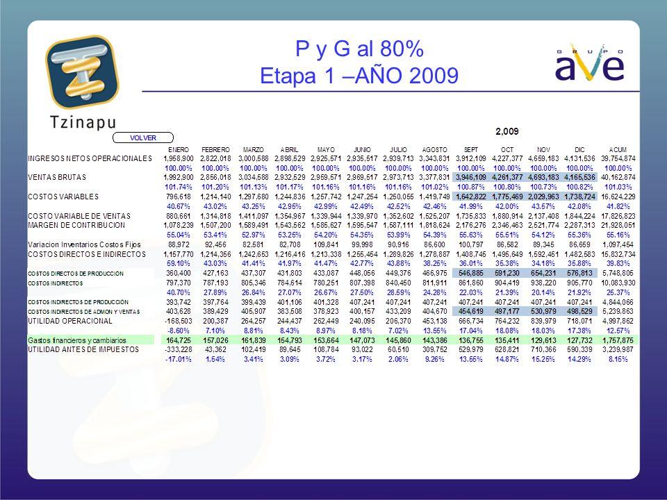 P y G al 80% Etapa 1 –AÑO 2009
