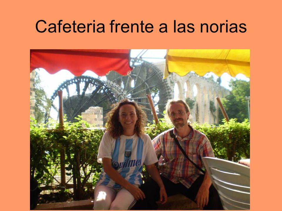 Cafeteria frente a las norias