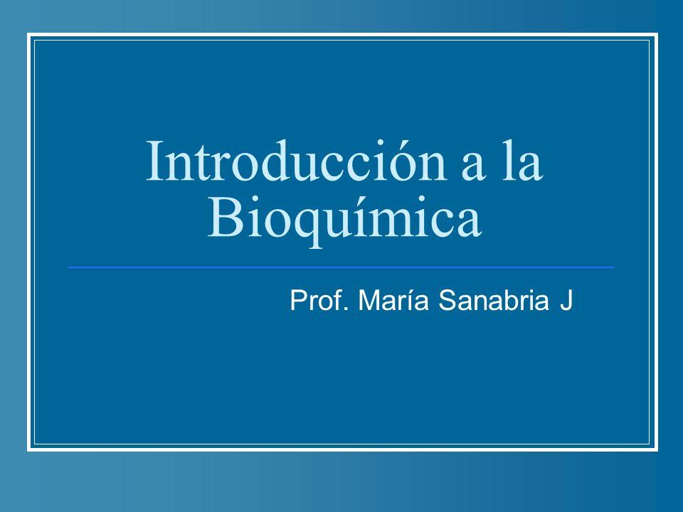 Introducción a la Bioquímica Prof. María Sanabria J