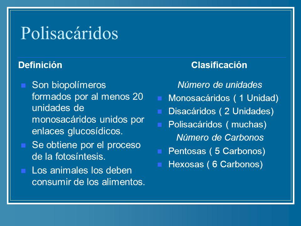 Polisacáridos Definición Son biopolímeros formados por al menos 20 unidades de monosacáridos unidos por enlaces glucosídicos. Se obtiene por el proces