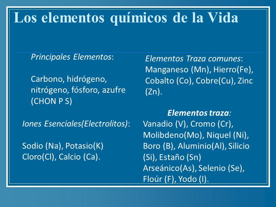 Los elementos químicos de la Vida Principales Elementos: Carbono, hidrógeno, nitrógeno, fósforo, azufre (CHON P S) Iones Esenciales(Electrolitos): Sod
