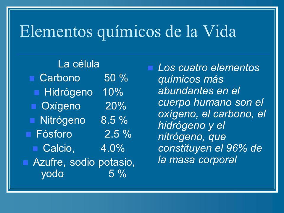 Elementos químicos de la Vida La célula Carbono 50 % Hidrógeno 10% Oxígeno 20% Nitrógeno 8.5 % Fósforo 2.5 % Calcio, 4.0% Azufre, sodio potasio, yodo