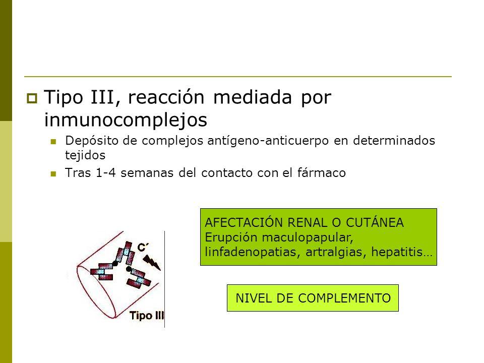 Tipo III, reacción mediada por inmunocomplejos Depósito de complejos antígeno-anticuerpo en determinados tejidos Tras 1-4 semanas del contacto con el