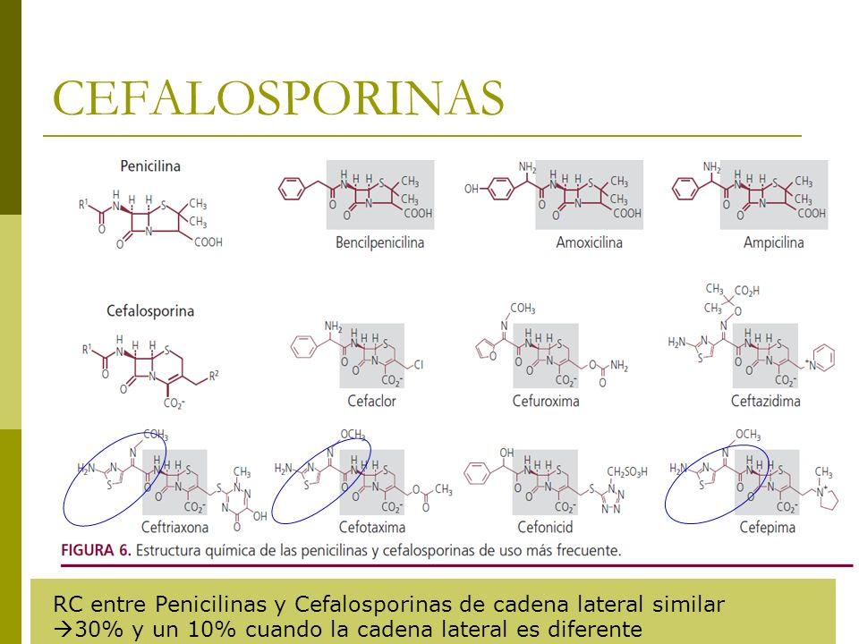 CEFALOSPORINAS RC entre Penicilinas y Cefalosporinas de cadena lateral similar 30% y un 10% cuando la cadena lateral es diferente