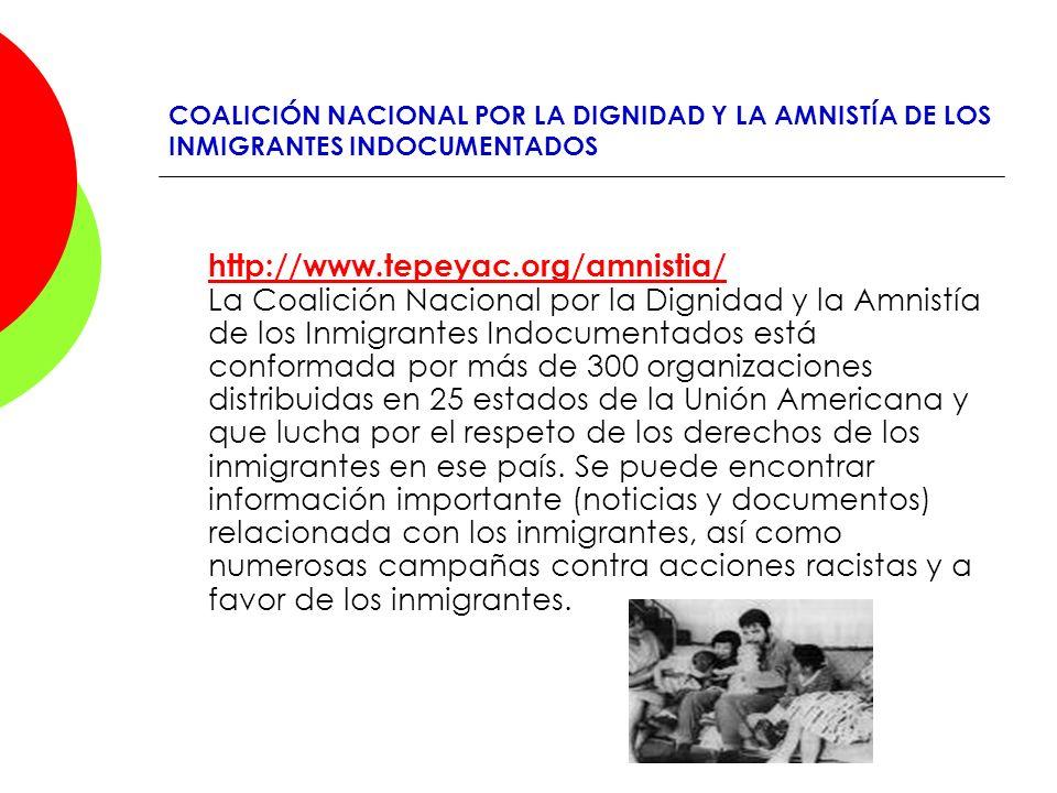 COALICIÓN NACIONAL POR LA DIGNIDAD Y LA AMNISTÍA DE LOS INMIGRANTES INDOCUMENTADOS http://www.tepeyac.org/amnistia/ http://www.tepeyac.org/amnistia/ L