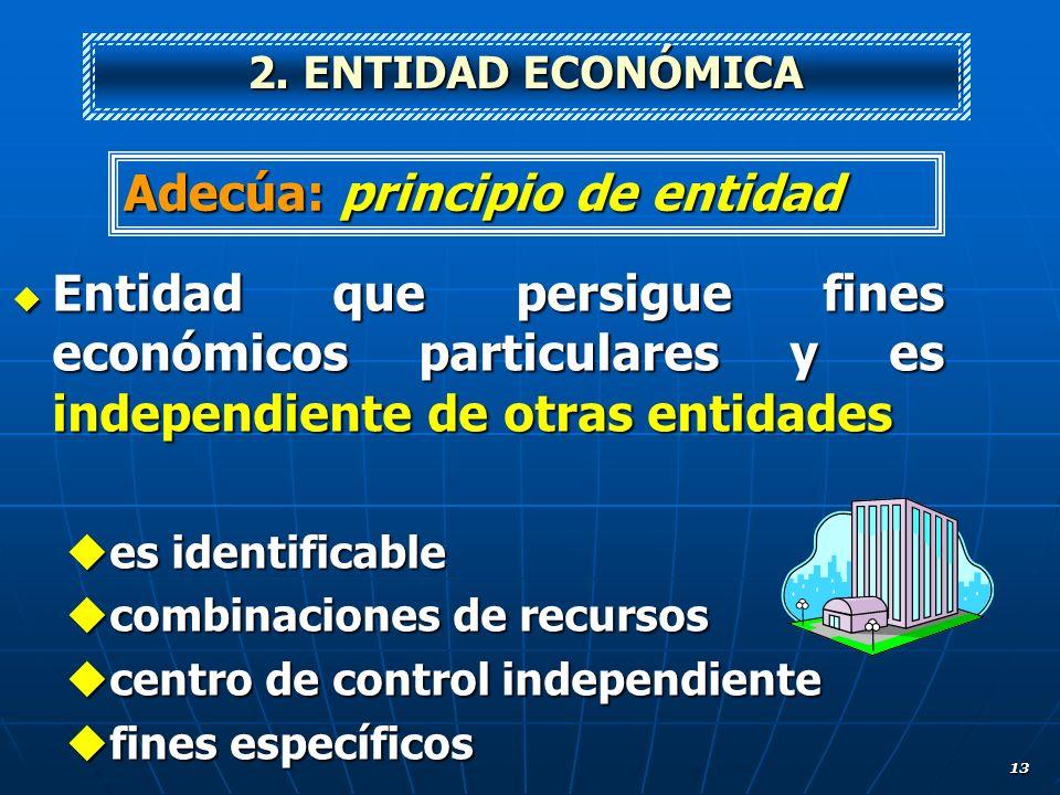 13 Entidad que persigue fines económicos particulares y es independiente de otras entidades Entidad que persigue fines económicos particulares y es in