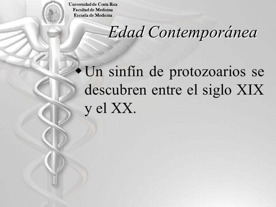 Edad Contemporánea Un sinfín de protozoarios se descubren entre el siglo XIX y el XX. Universidad de Costa Rica Facultad de Medicina Escuela de Medici