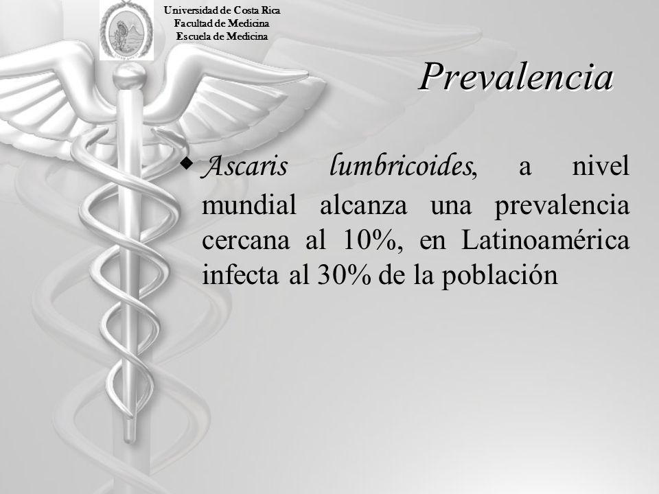 Prevalencia Ascaris lumbricoides, a nivel mundial alcanza una prevalencia cercana al 10%, en Latinoamérica infecta al 30% de la población Universidad