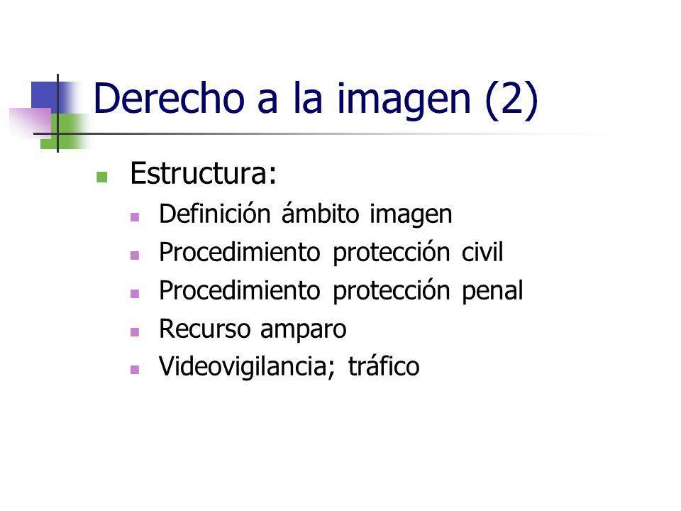 Derecho a la imagen (2) Estructura: Definición ámbito imagen Procedimiento protección civil Procedimiento protección penal Recurso amparo Videovigilancia; tráfico