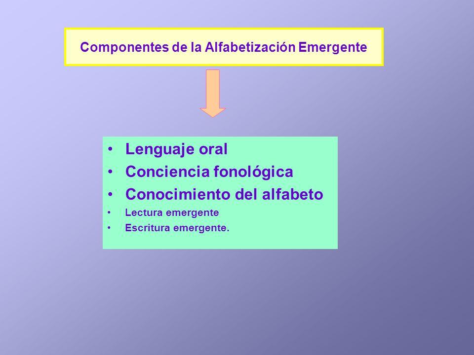 Lenguaje oral Conciencia fonológica Conocimiento del alfabeto Lectura emergente Escritura emergente. Componentes de la Alfabetización Emergente