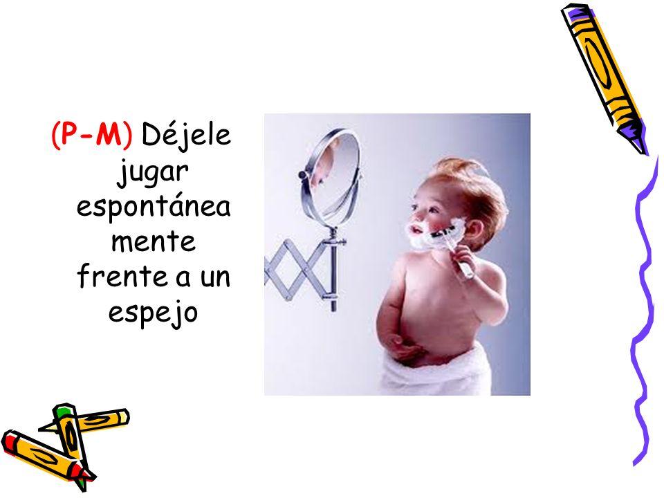 (P-M) Déjele jugar espontánea mente frente a un espejo