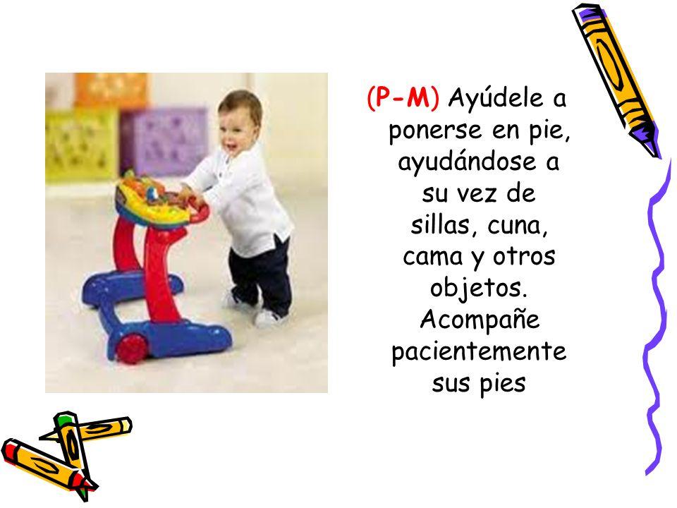 (P-M) Ayúdele a ponerse en pie, ayudándose a su vez de sillas, cuna, cama y otros objetos. Acompañe pacientemente sus pies