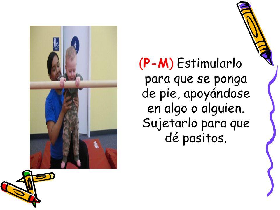 (P-M) Estimularlo para que se ponga de pie, apoyándose en algo o alguien. Sujetarlo para que dé pasitos.