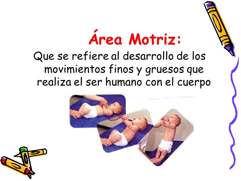 Área Motriz: Que se refiere al desarrollo de los movimientos finos y gruesos que realiza el ser humano con el cuerpo