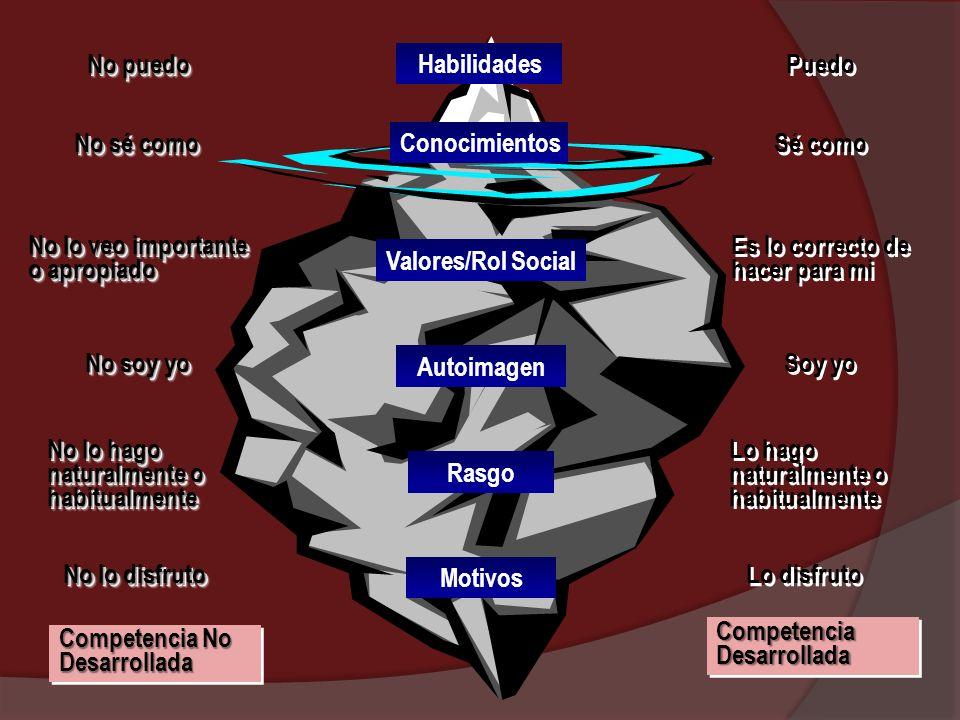 Criterios de evaluación del Portafolio grupal: Organización y Clasificación.