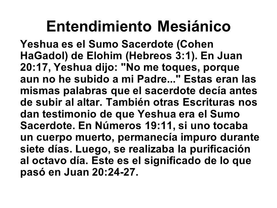Entendimiento Mesiánico Yeshua es el Sumo Sacerdote (Cohen HaGadol) de Elohim (Hebreos 3:1). En Juan 20:17, Yeshua dijo: