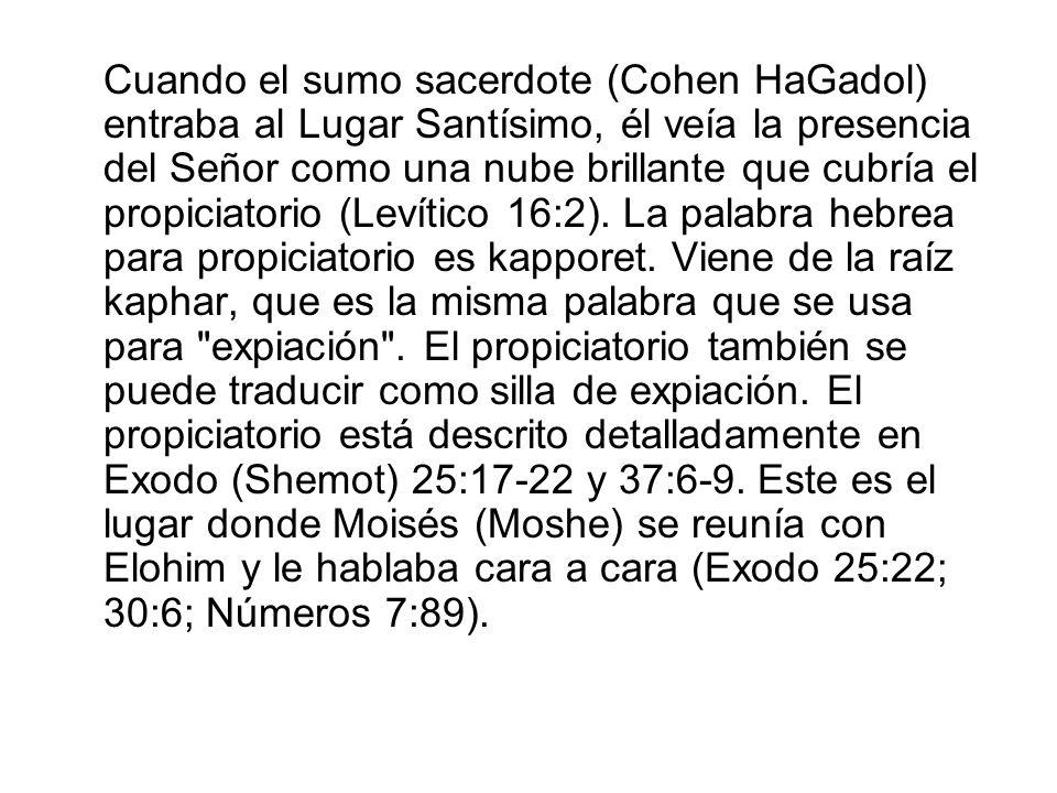Cuando el sumo sacerdote (Cohen HaGadol) entraba al Lugar Santísimo, él veía la presencia del Señor como una nube brillante que cubría el propiciatori