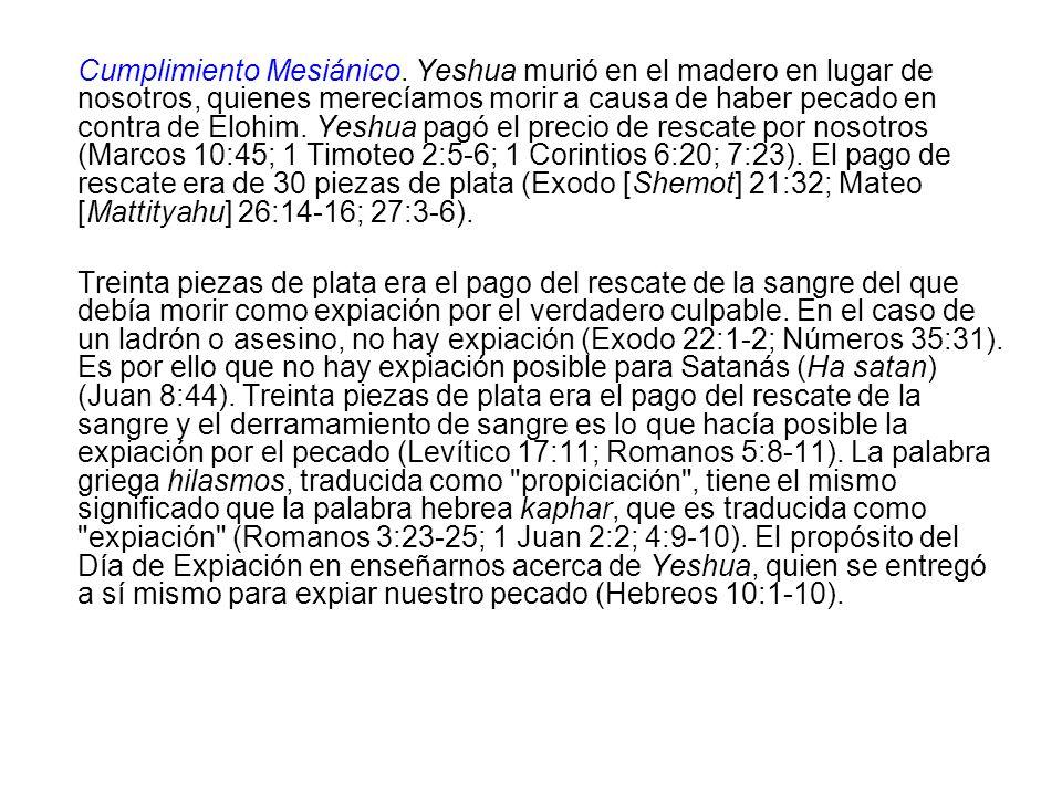 Cumplimiento Mesiánico. Yeshua murió en el madero en lugar de nosotros, quienes merecíamos morir a causa de haber pecado en contra de Elohim. Yeshua p