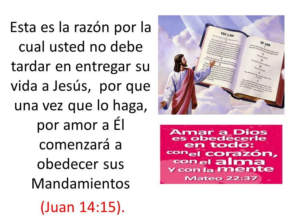Esta es la razón por la cual usted no debe tardar en entregar su vida a Jesús, por que una vez que lo haga, por amor a Él comenzará a obedecer sus Man