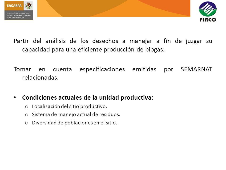 o El sistema de producción debe ser tecnificado.