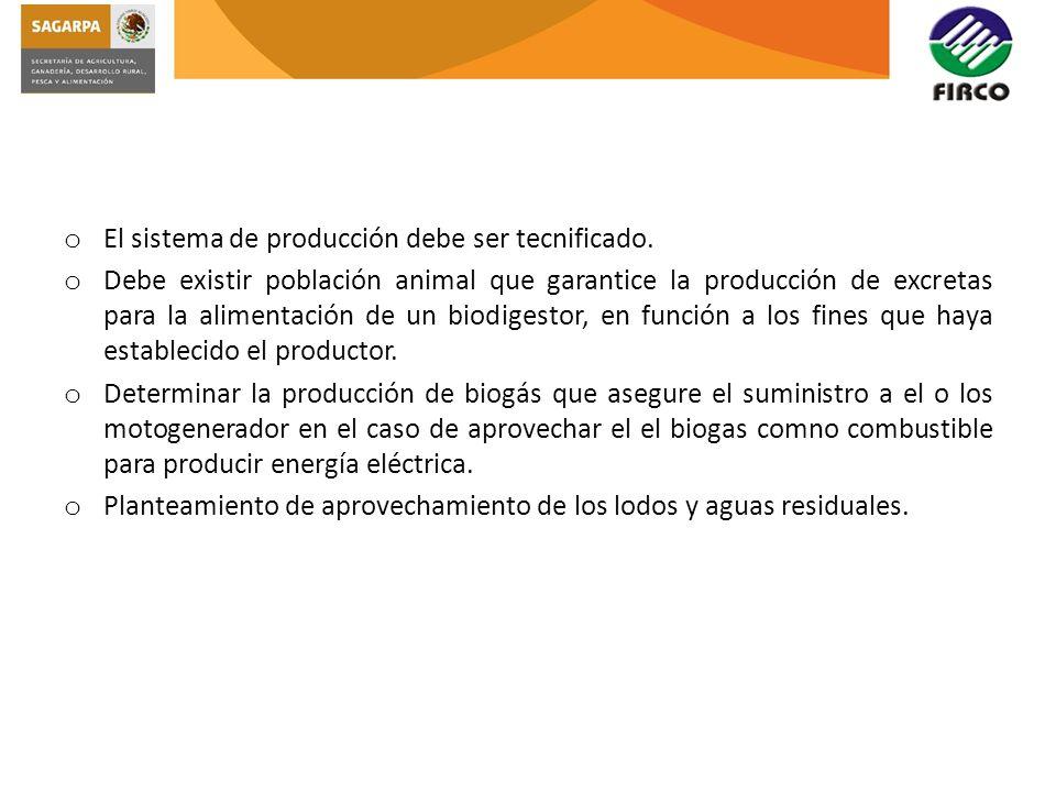 o El sistema de producción debe ser tecnificado. o Debe existir población animal que garantice la producción de excretas para la alimentación de un bi