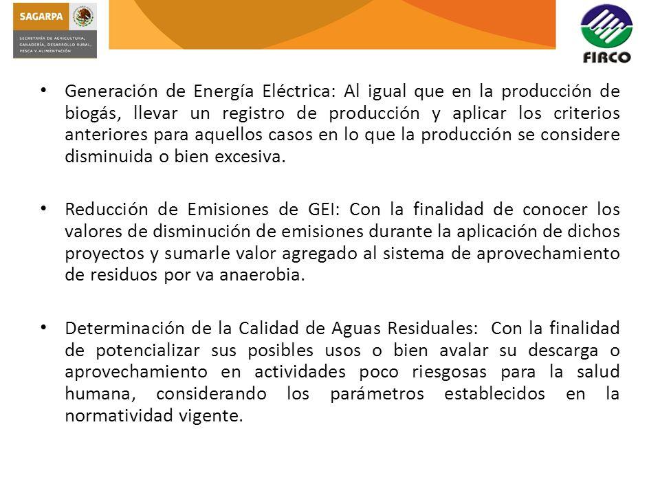 Generación de Energía Eléctrica: Al igual que en la producción de biogás, llevar un registro de producción y aplicar los criterios anteriores para aqu