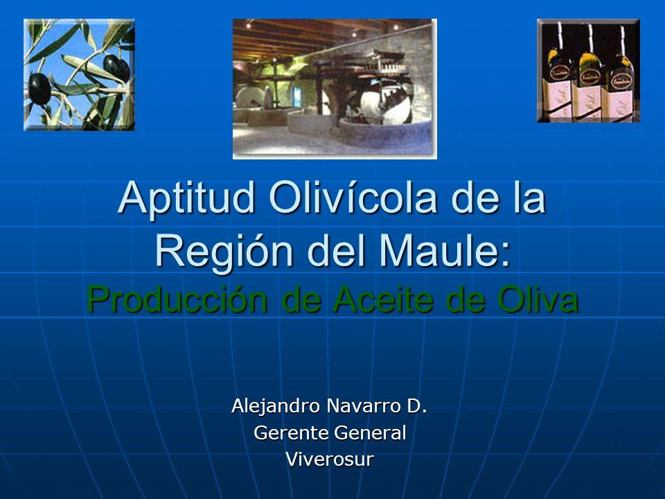 Distribución de la superficie olivícola por provincia de la Región del Maule CuricoTalcaLinaresCauquenesTotal 235,32 has130,37 has0,00 has21,21 has386,90 has Fuente: elaboración propia en base a Catastro Frutícola 2001 de la Región del Maule.