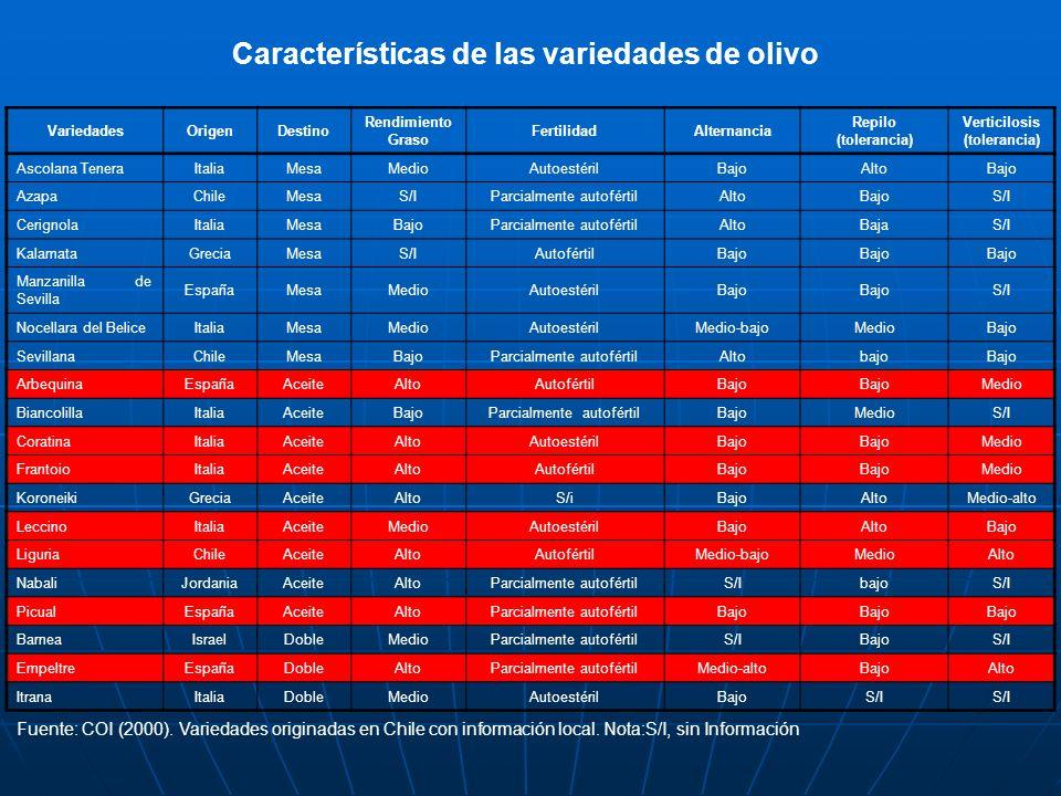 Características de las variedades de olivo VariedadesOrigenDestino Rendimiento Graso FertilidadAlternancia Repilo (tolerancia) Verticilosis (toleranci
