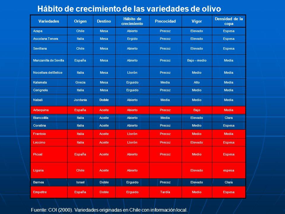 Hábito de crecimiento de las variedades de olivo VariedadesOrigenDestino Hábito de crecimiento PrecocidadVigor Densidad de la copa AzapaChileMesaAbier