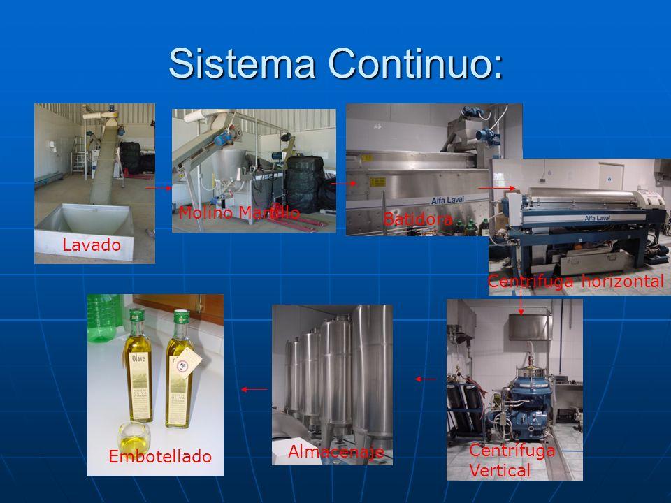 Sistema Continuo: Lavado Molino Martillo Batidora Centrifuga horizontal Centrífuga Vertical Almacenaje Embotellado