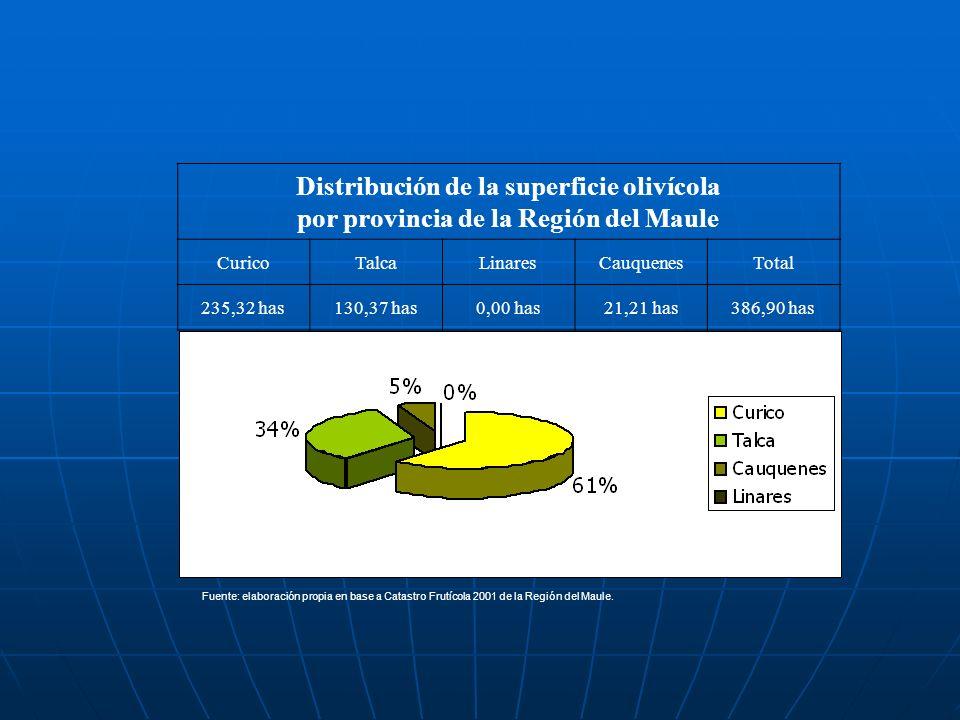 Distribución de la superficie olivícola por provincia de la Región del Maule CuricoTalcaLinaresCauquenesTotal 235,32 has130,37 has0,00 has21,21 has386