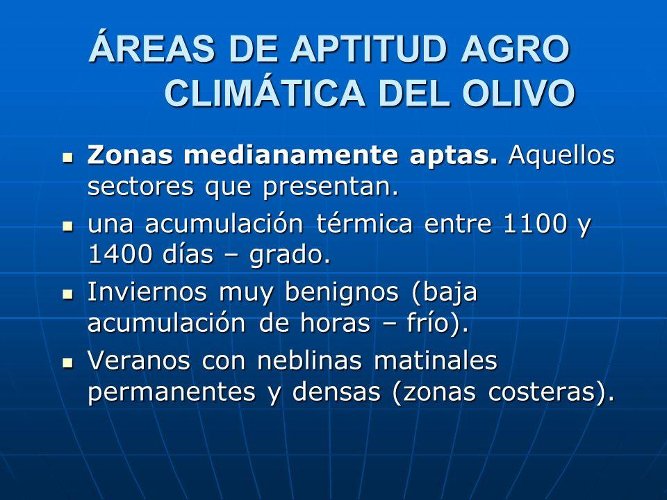 ÁREAS DE APTITUD AGRO CLIMÁTICA DEL OLIVO Zonas medianamente aptas. Aquellos sectores que presentan. Zonas medianamente aptas. Aquellos sectores que p