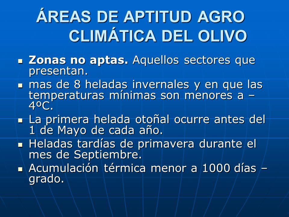 ÁREAS DE APTITUD AGRO CLIMÁTICA DEL OLIVO Zonas no aptas. Aquellos sectores que presentan. Zonas no aptas. Aquellos sectores que presentan. mas de 8 h