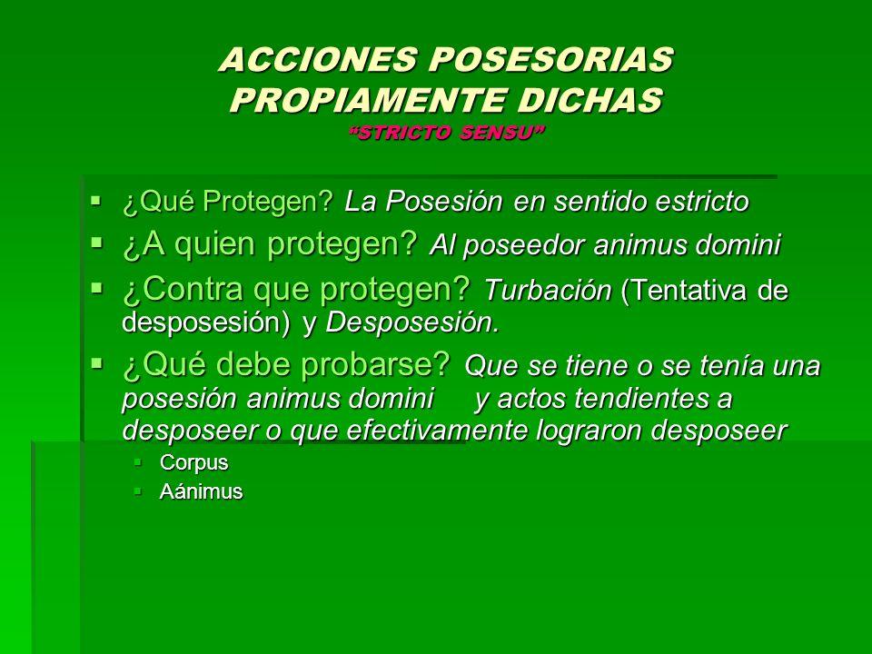 ACCIONES POSESORIAS POLICIALES ¿Qué Protegen.