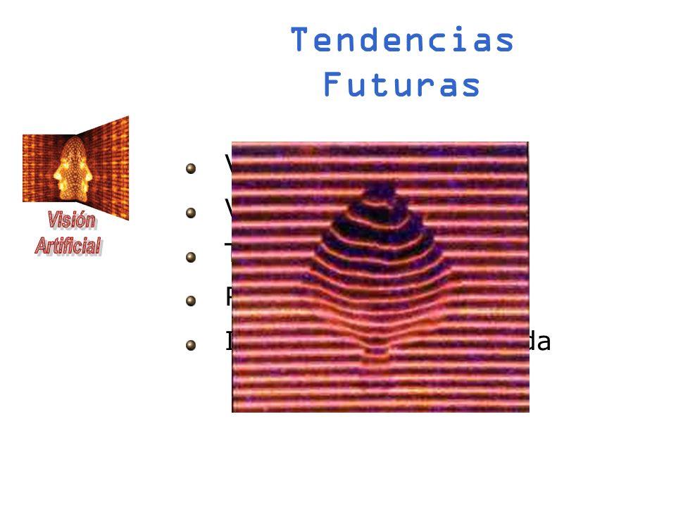 Tendencias Futuras Visión estéreo 3D Visión activa Telemetría Redes neuronales Iluminación estructurada