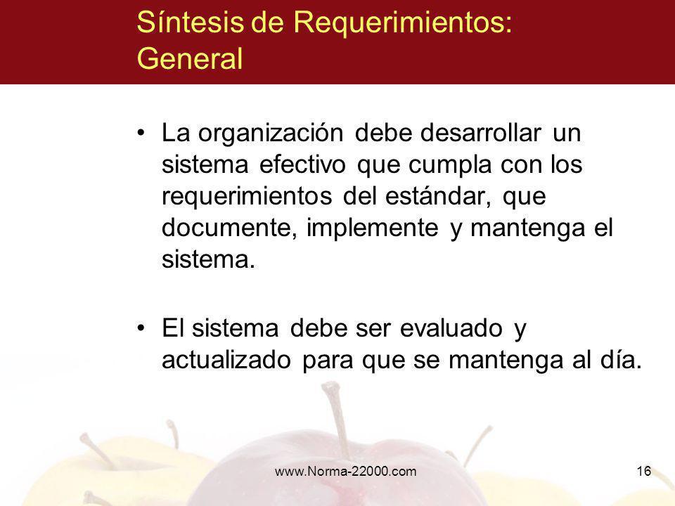 16 Síntesis de Requerimientos: General La organización debe desarrollar un sistema efectivo que cumpla con los requerimientos del estándar, que docume