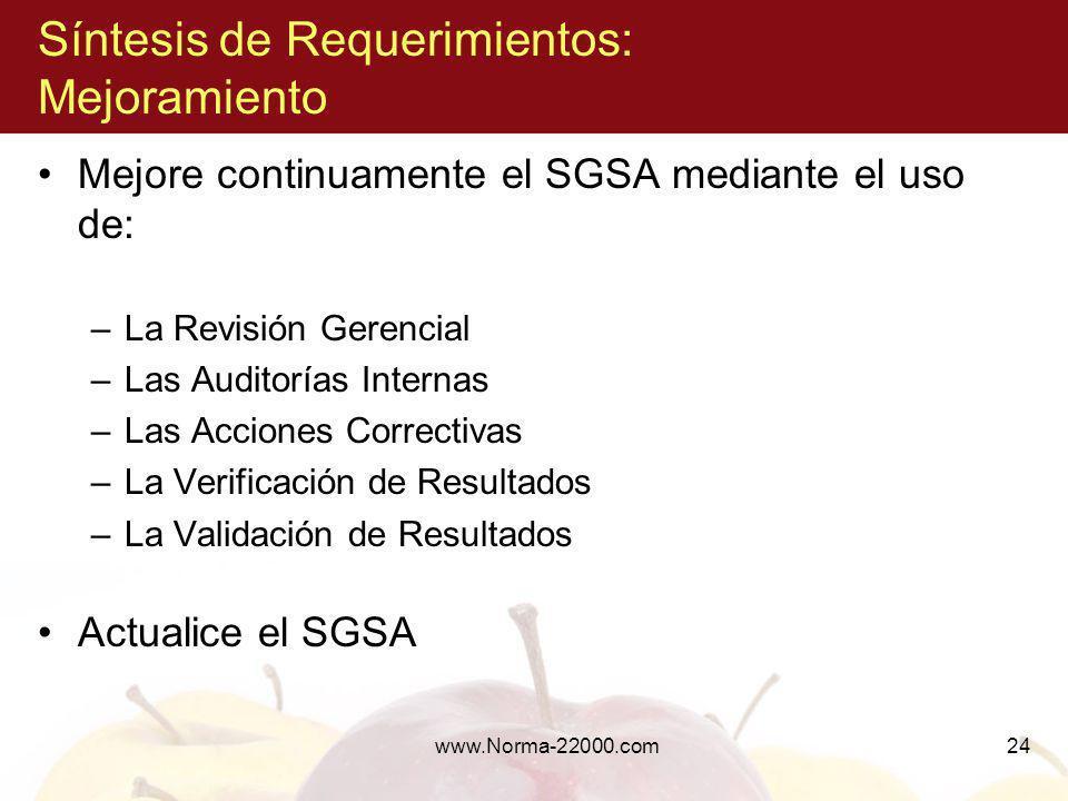 www.Norma-22000.com24 Síntesis de Requerimientos: Mejoramiento Mejore continuamente el SGSA mediante el uso de: –La Revisión Gerencial –Las Auditorías