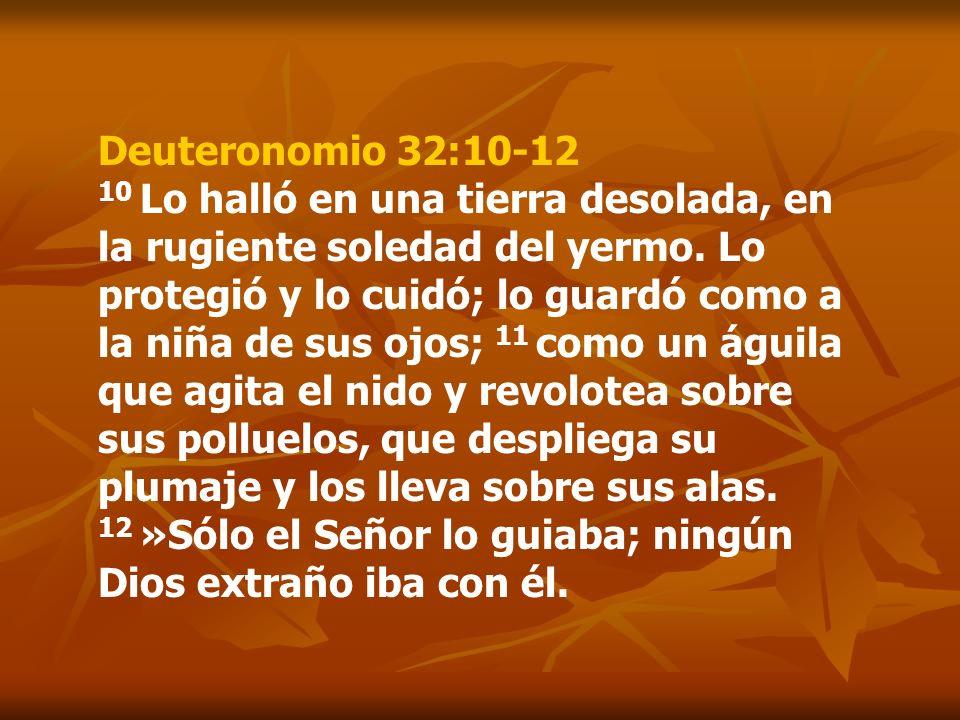 Deuteronomio 32:10-12 10 Lo halló en una tierra desolada, en la rugiente soledad del yermo. Lo protegió y lo cuidó; lo guardó como a la niña de sus oj