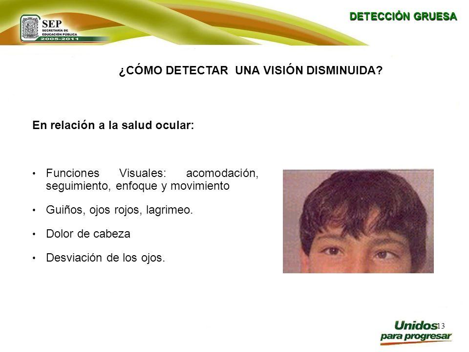 13 En relación a la salud ocular: Funciones Visuales: acomodación, seguimiento, enfoque y movimiento Guiños, ojos rojos, lagrimeo. Dolor de cabeza Des