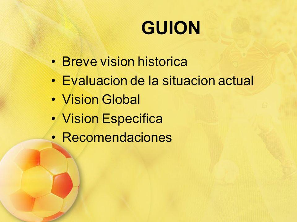 GUION Breve vision historica Evaluacion de la situacion actual Vision Global Vision Especifica Recomendaciones