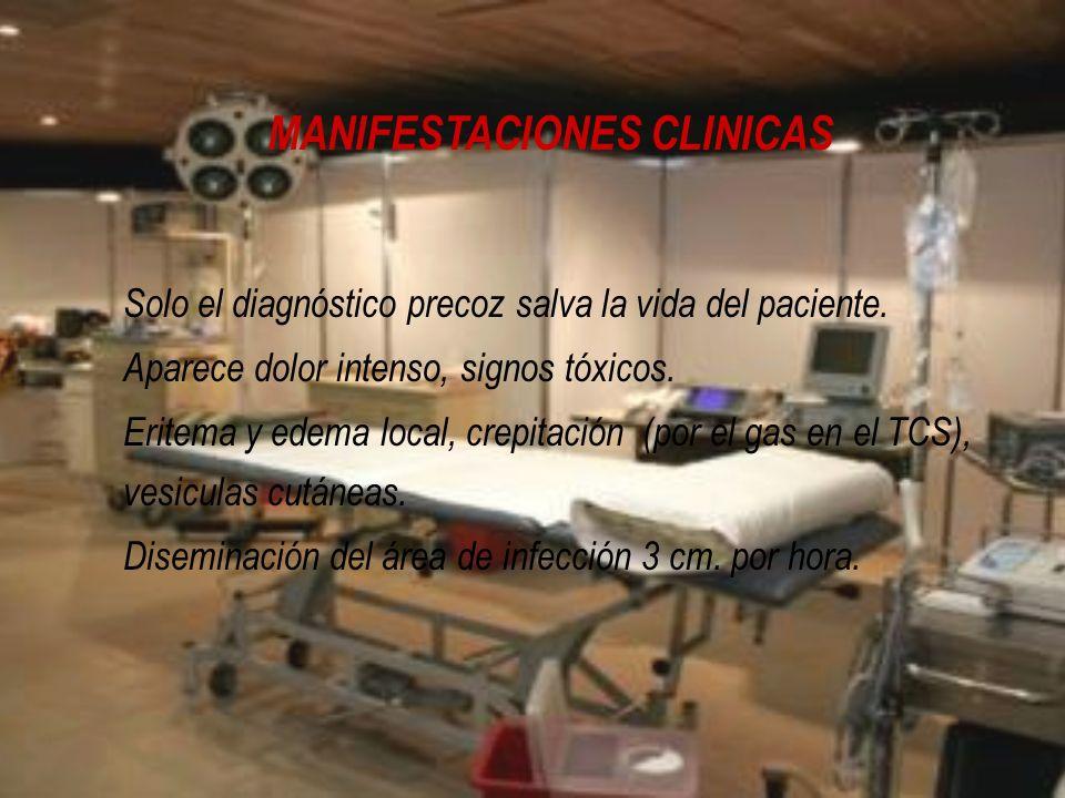 MANIFESTACIONES CLINICAS Solo el diagnóstico precoz salva la vida del paciente. Aparece dolor intenso, signos tóxicos. Eritema y edema local, crepitac