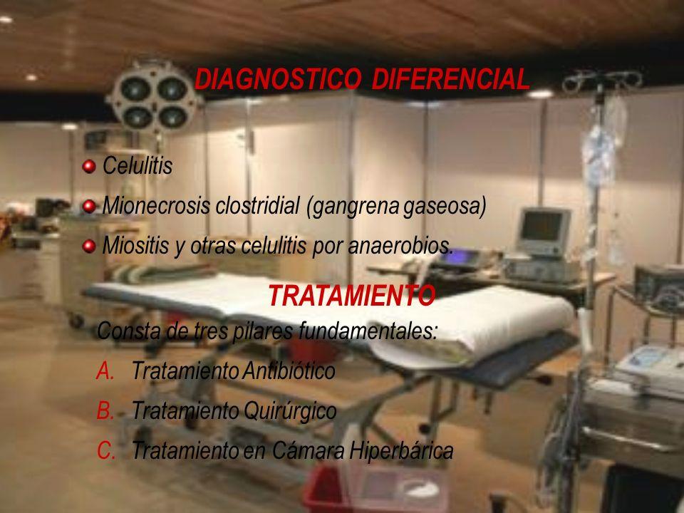 DIAGNOSTICO DIFERENCIAL Celulitis Mionecrosis clostridial (gangrena gaseosa) Miositis y otras celulitis por anaerobios. TRATAMIENTO Consta de tres pil