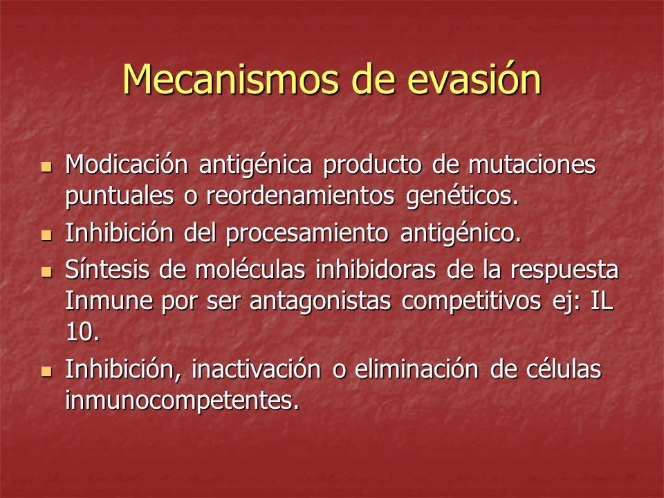 Mecanismos de evasión Modicación antigénica producto de mutaciones puntuales o reordenamientos genéticos. Modicación antigénica producto de mutaciones