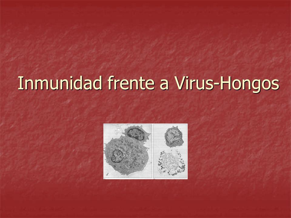 ¿Cómo se eliminan patógenos que habitan en diferentes compartimientos celulares.