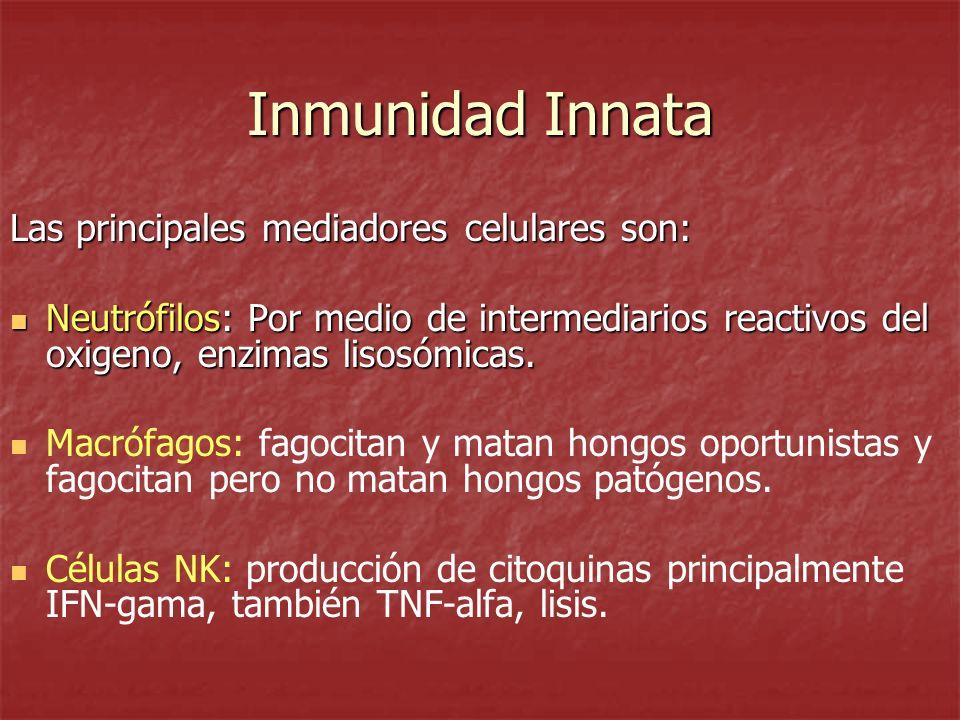 Inmunidad Innata Las principales mediadores celulares son: Neutrófilos: Por medio de intermediarios reactivos del oxigeno, enzimas lisosómicas. Neutró