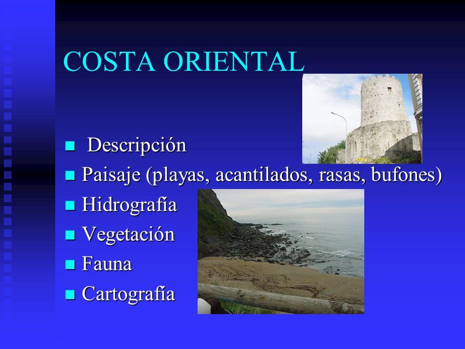 COSTA ORIENTAL Descripción Descripción Paisaje (playas, acantilados, rasas, bufones) Paisaje (playas, acantilados, rasas, bufones) Hidrografía Hidrogr