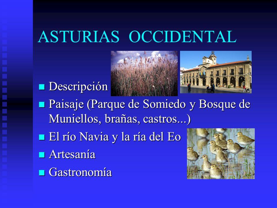 ASTURIAS OCCIDENTAL Descripción Descripción Paisaje (Parque de Somiedo y Bosque de Muniellos, brañas, castros...) Paisaje (Parque de Somiedo y Bosque