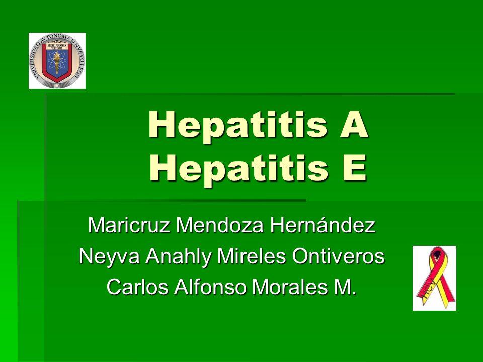 Hepatitis A Hepatitis E Maricruz Mendoza Hernández Neyva Anahly Mireles Ontiveros Carlos Alfonso Morales M.